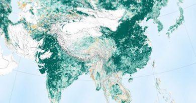"""Según imágenes de la Nasa, el mundo está más """"verde"""" que hace 20 años"""