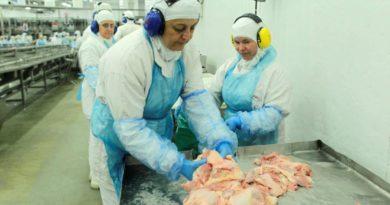 Detectan coronavirus en China en un lote de pollos importado desde Brasil
