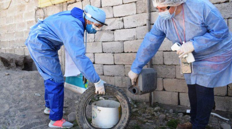 Jujuy registra 43 casos de dengue