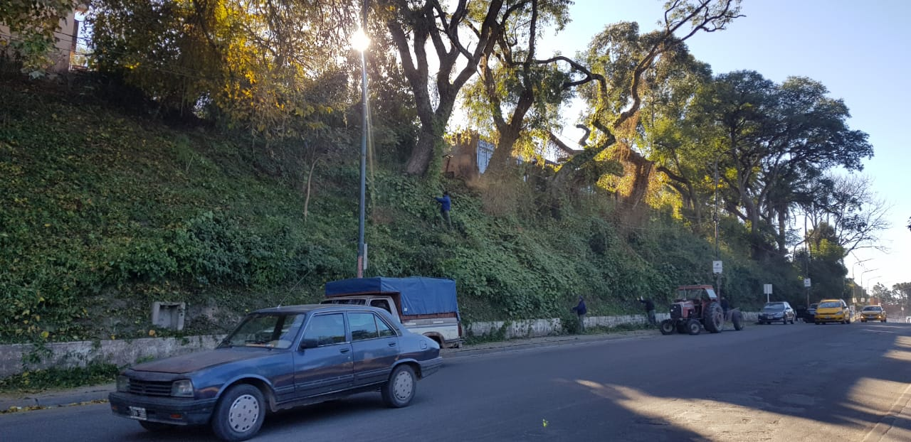 Realizan limpieza de espacio verde entre Chijra y Los Perales